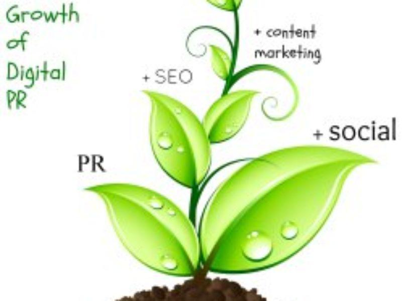 Growth Of Digital PR – Digital Content, SEO, Social Media